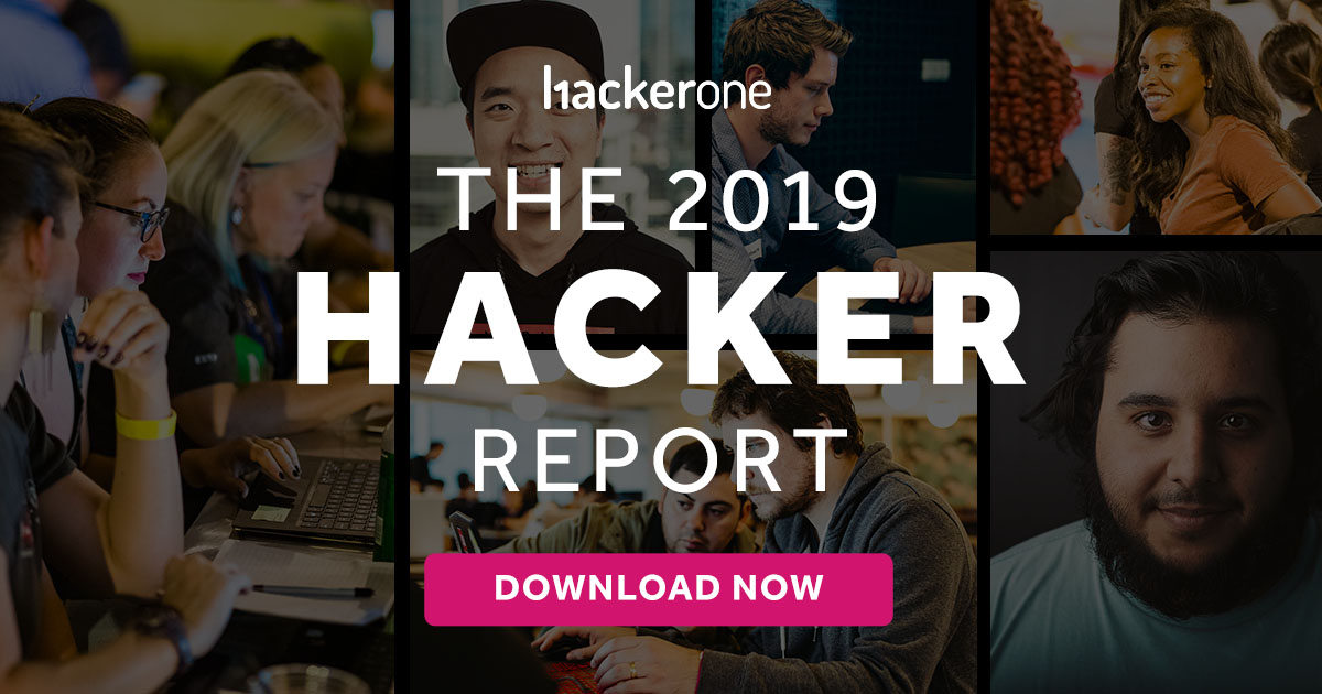 The 2019 Hacker Report