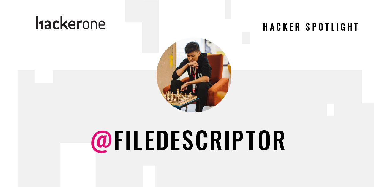 Picture of filedescriptor